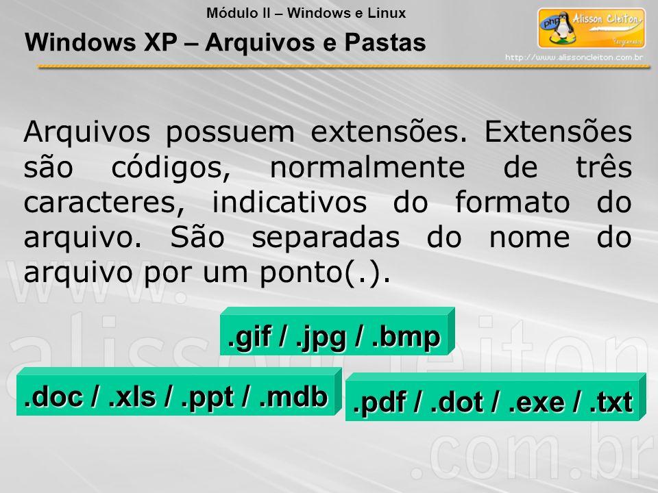 Arquivos possuem extensões. Extensões são códigos, normalmente de três caracteres, indicativos do formato do arquivo. São separadas do nome do arquivo
