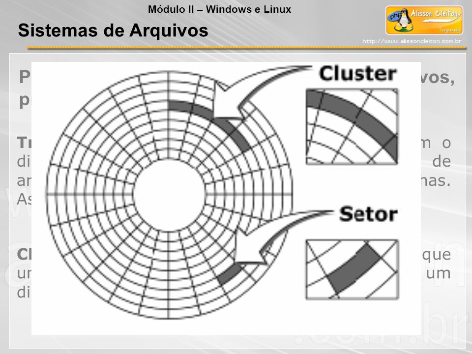 Trilhas são os círculos concêntricos que formam o disco e setores são pequenas unidades de armazenamento de dados, organizados nessas trilhas. As tril