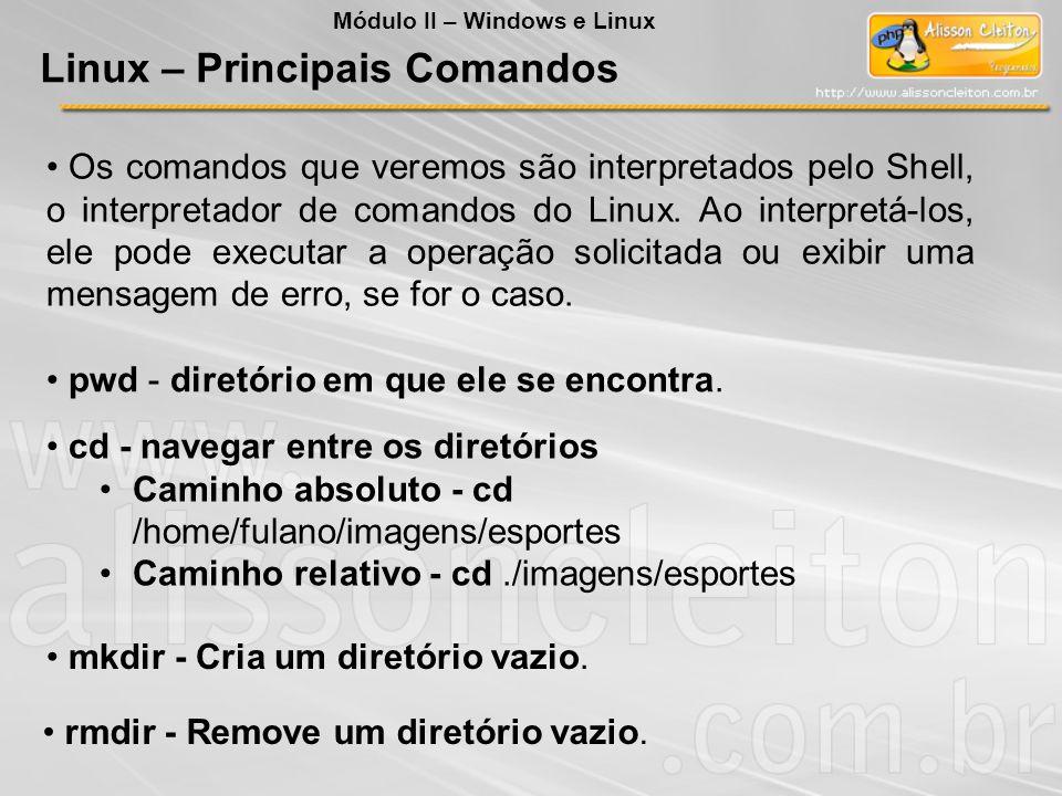 Os comandos que veremos são interpretados pelo Shell, o interpretador de comandos do Linux. Ao interpretá-los, ele pode executar a operação solicitada