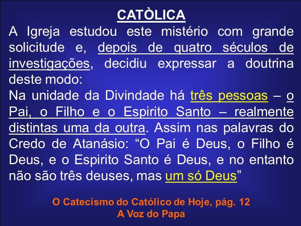 CATÒLICA A Igreja estudou este mistério com grande solicitude e, depois de quatro séculos de investigações, decidiu expressar a doutrina deste modo: N