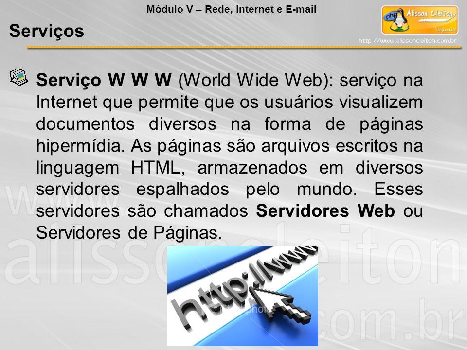 Serviço W W W (World Wide Web): serviço na Internet que permite que os usuários visualizem documentos diversos na forma de páginas hipermídia. As pági