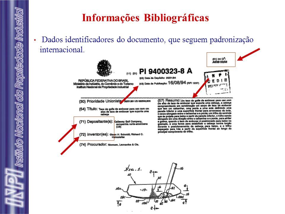 Dados identificadores do documento, que seguem padronização internacional. Informações Bibliográficas