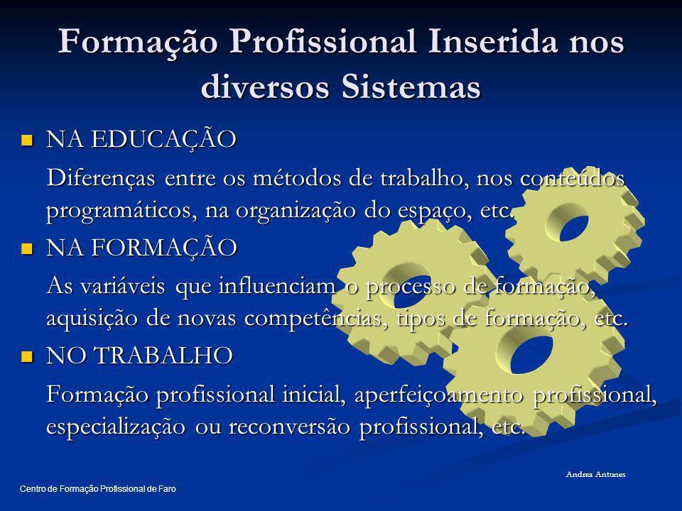 Formação Profissional Inserida nos diversos Sistemas NA EDUCAÇÃO NA EDUCAÇÃO Diferenças entre os métodos de trabalho, nos conteúdos programáticos, na