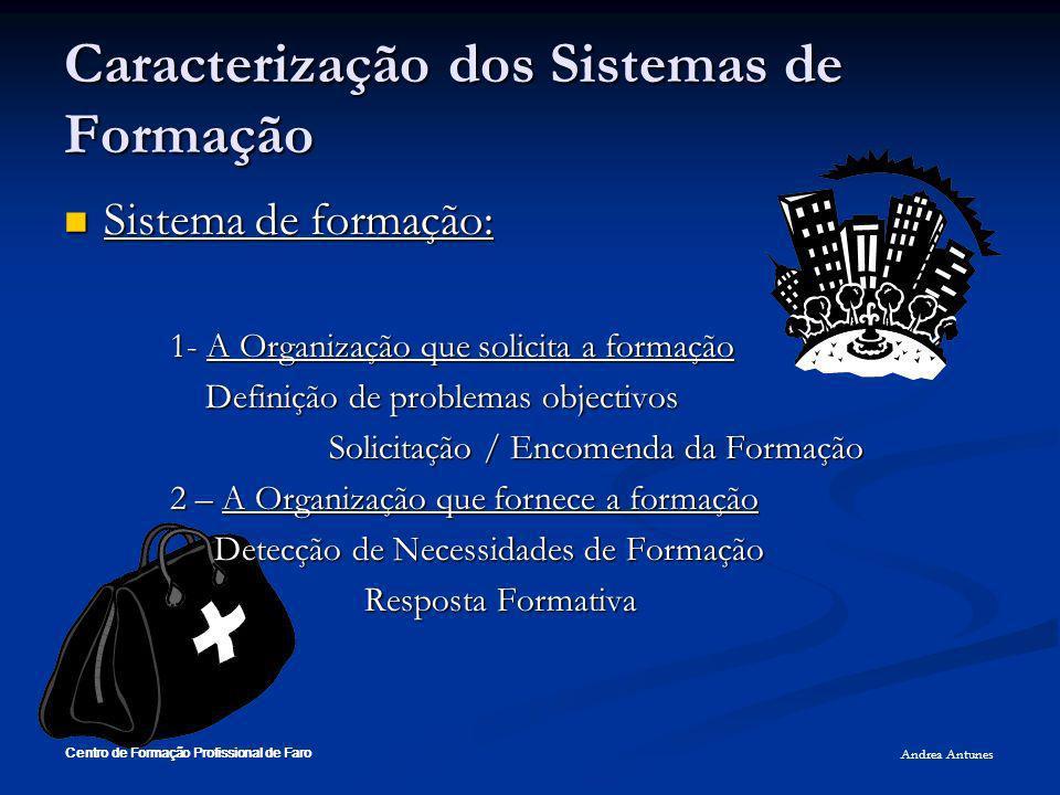 Caracterização dos Sistemas de Formação Sistema de formação: Sistema de formação: 1- A Organização que solicita a formação Definição de problemas obje