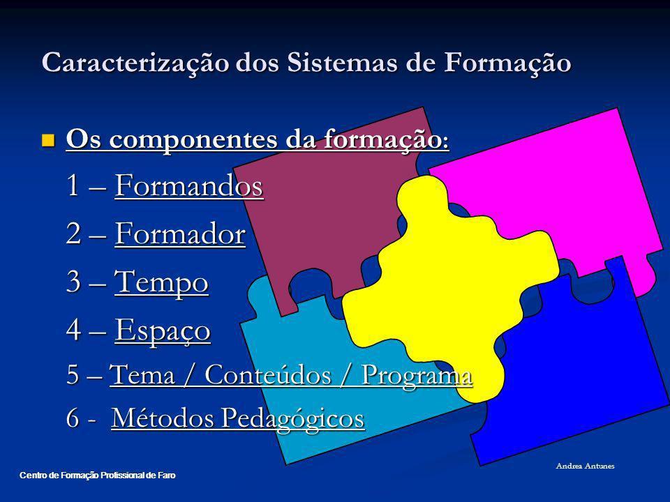 Caracterização dos Sistemas de Formação Os componentes da formação : importância e articulação Os componentes da formação : importância e articulação 1 – Formandos São os principais intervenientes da acção de formação, dado que são eles que a justificam.