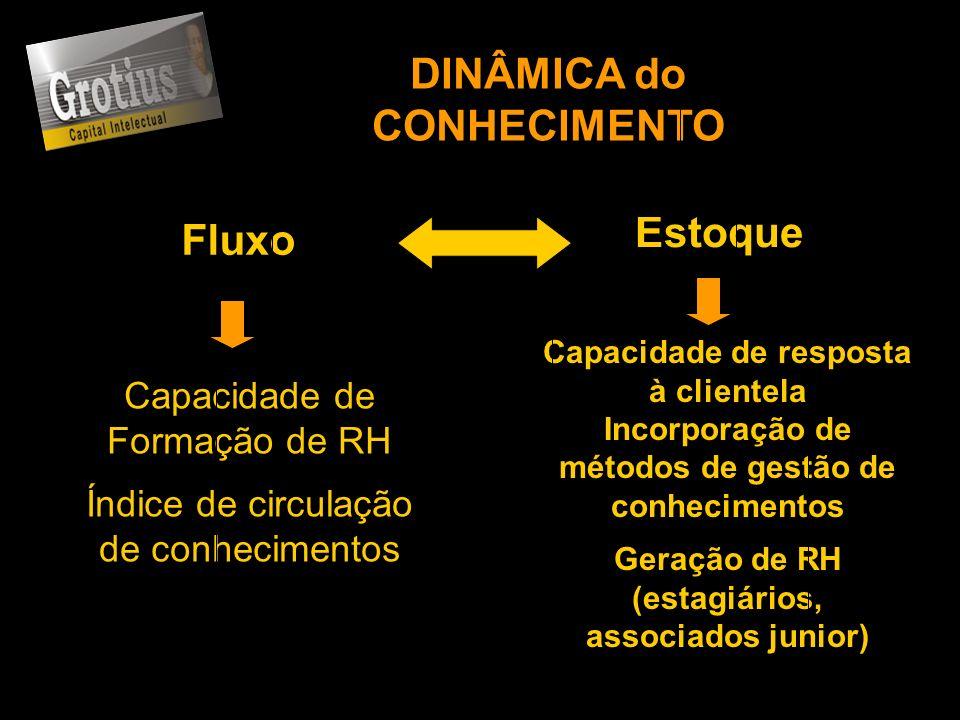 DINÂMICA do CONHECIMENTO Fluxo Estoque Capacidade de Formação de RH Índice de circulação de conhecimentos Capacidade de resposta à clientela Incorpora