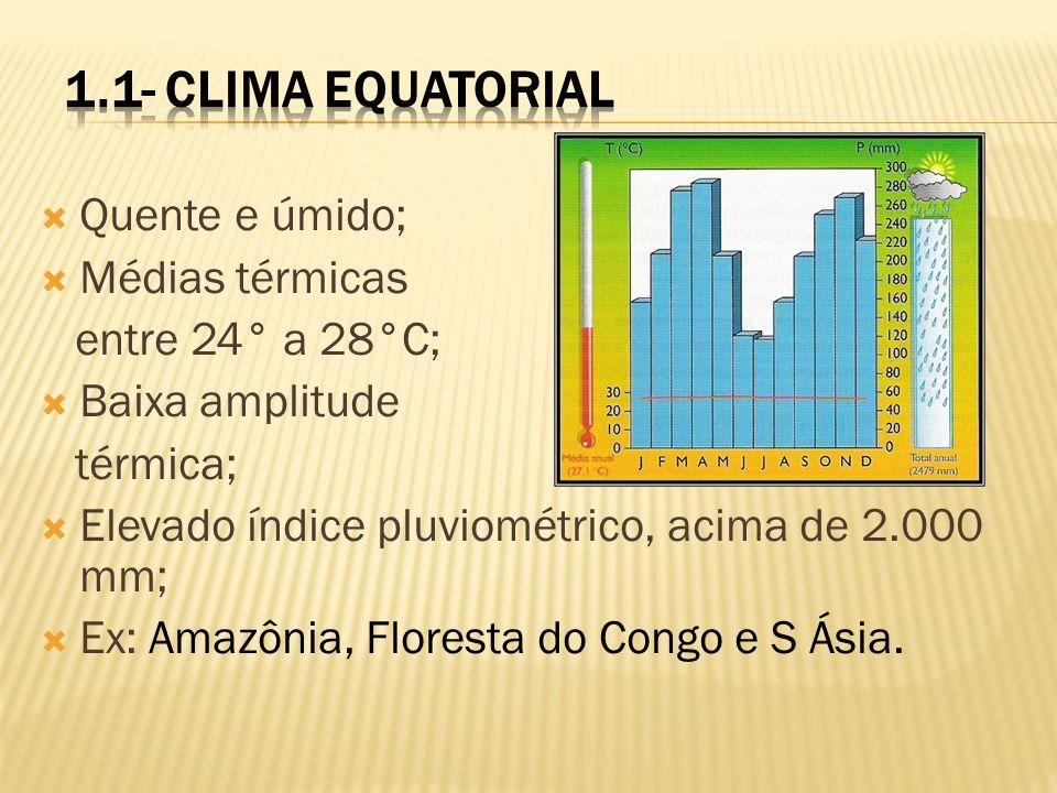 Quente e úmido; Médias térmicas entre 24° a 28°C; Baixa amplitude térmica; Elevado índice pluviométrico, acima de 2.000 mm; Ex: Amazônia, Floresta do