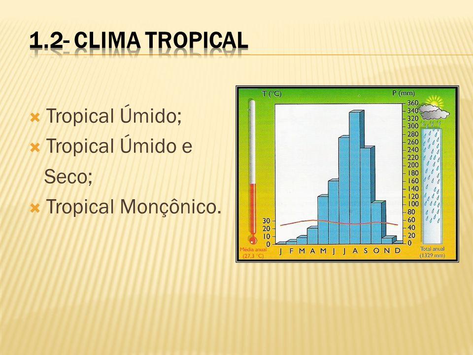 Tropical Úmido; Tropical Úmido e Seco; Tropical Monçônico.