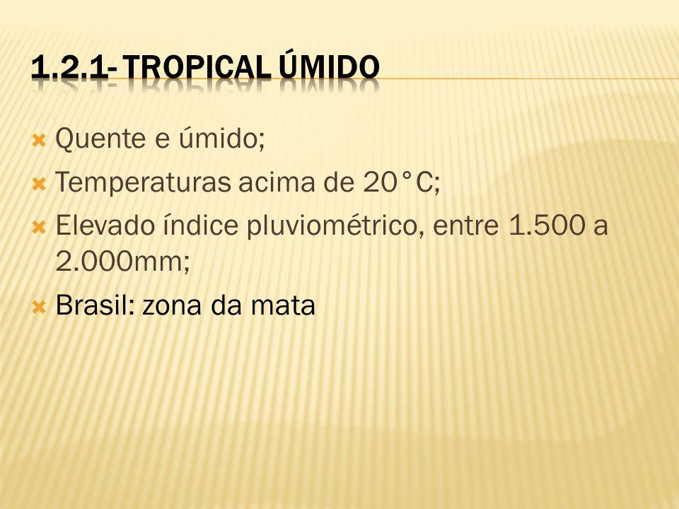Quente e úmido; Temperaturas acima de 20°C; Elevado índice pluviométrico, entre 1.500 a 2.000mm; Brasil: zona da mata
