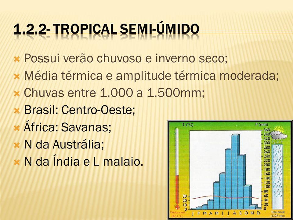 Possui verão chuvoso e inverno seco; Média térmica e amplitude térmica moderada; Chuvas entre 1.000 a 1.500mm; Brasil: Centro-Oeste; África: Savanas;