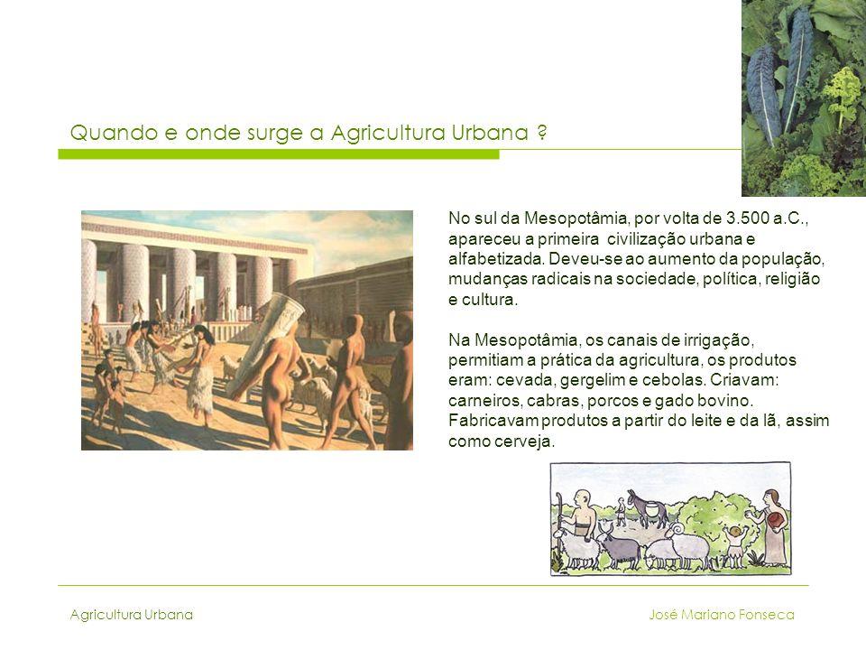 Quando e onde surge a Agricultura Urbana ? No sul da Mesopotâmia, por volta de 3.500 a.C., apareceu a primeira civilização urbana e alfabetizada. Deve