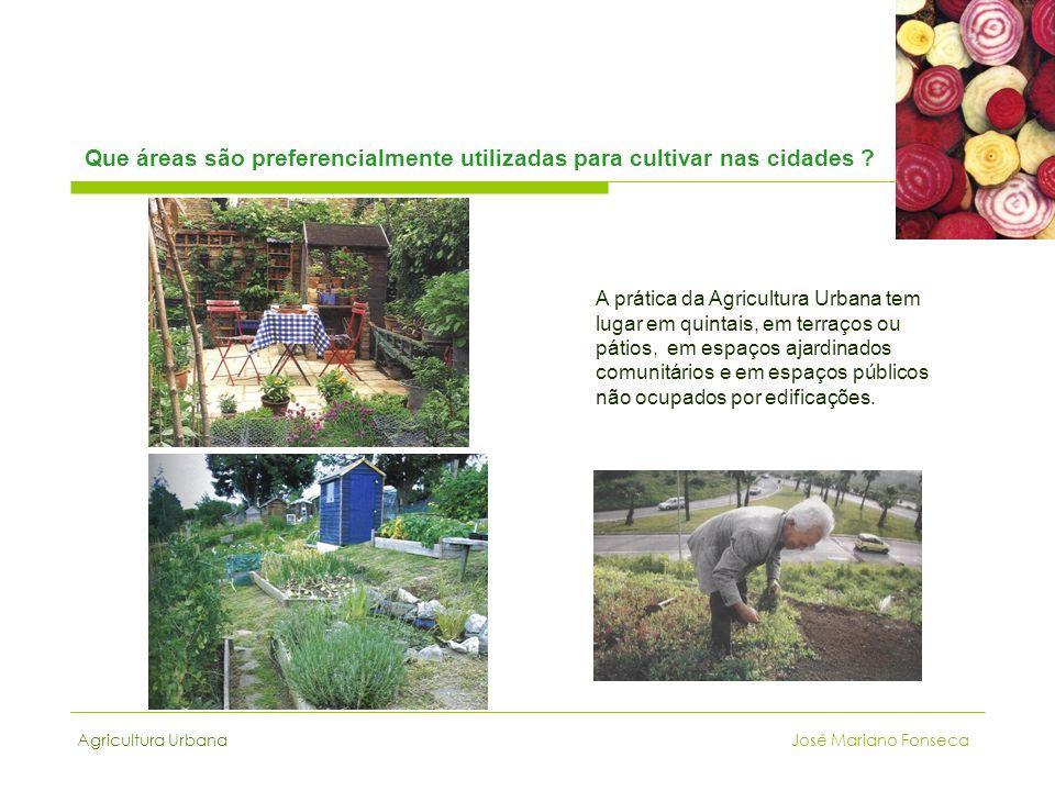 Agricultura Urbana José Mariano Fonseca Que áreas são preferencialmente utilizadas para cultivar nas cidades ? A prática da Agricultura Urbana tem lug