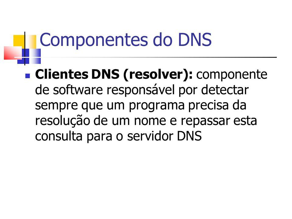Componentes do DNS Clientes DNS (resolver): componente de software responsável por detectar sempre que um programa precisa da resolução de um nome e r