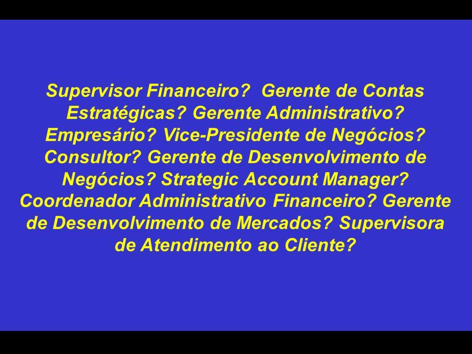 Supervisor Financeiro? Gerente de Contas Estratégicas? Gerente Administrativo? Empresário? Vice-Presidente de Negócios? Consultor? Gerente de Desenvol