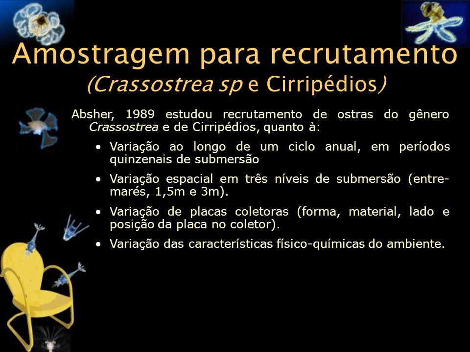 Amostragem para recrutamento (Crassostrea sp e Cirripédios) Absher, 1989 estudou recrutamento de ostras do gênero Crassostrea e de Cirripédios, quanto