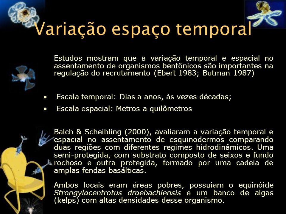 Variação espaço temporal Estudos mostram que a variação temporal e espacial no assentamento de organismos bentônicos são importantes na regulação do r