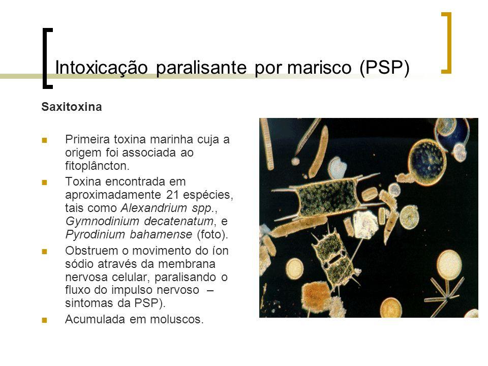 Intoxicação paralisante por marisco (PSP) Saxitoxina Primeira toxina marinha cuja a origem foi associada ao fitoplâncton. Toxina encontrada em aproxim