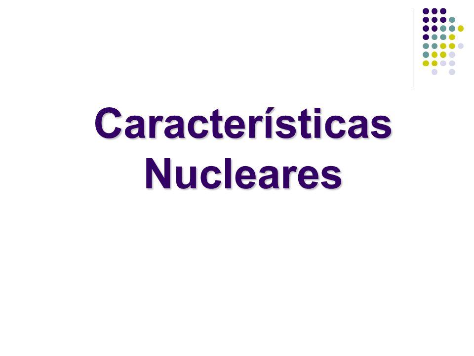 Estabilidade nuclear Os núcleos atômicos possuem partículas carregadas (prótons) comprimidos em um pequeno volume, apesar das imensas forças repulsivas a maioria dos núcleos sobrevive.