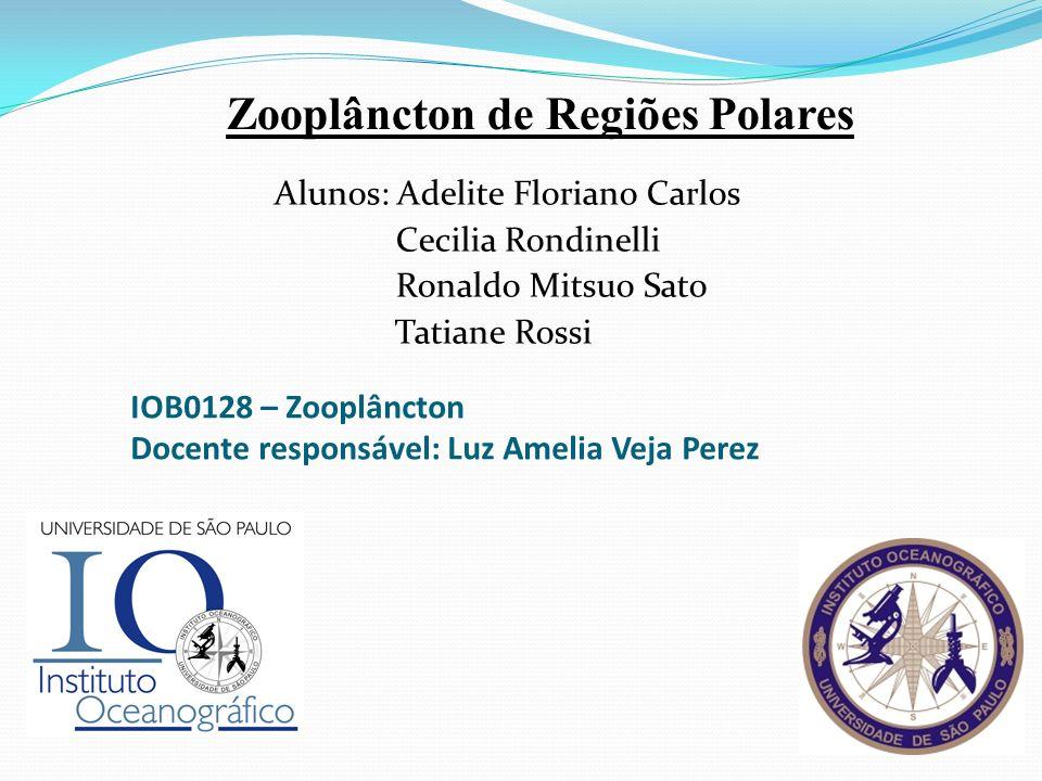 IOB0128 – Zooplâncton Docente responsável: Luz Amelia Veja Perez Alunos: Adelite Floriano Carlos Cecilia Rondinelli Ronaldo Mitsuo Sato Tatiane Rossi