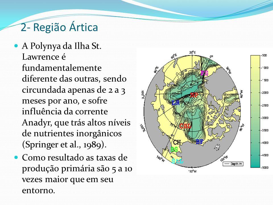 2- Região Ártica A Polynya da Ilha St. Lawrence é fundamentalemente diferente das outras, sendo circundada apenas de 2 a 3 meses por ano, e sofre infl