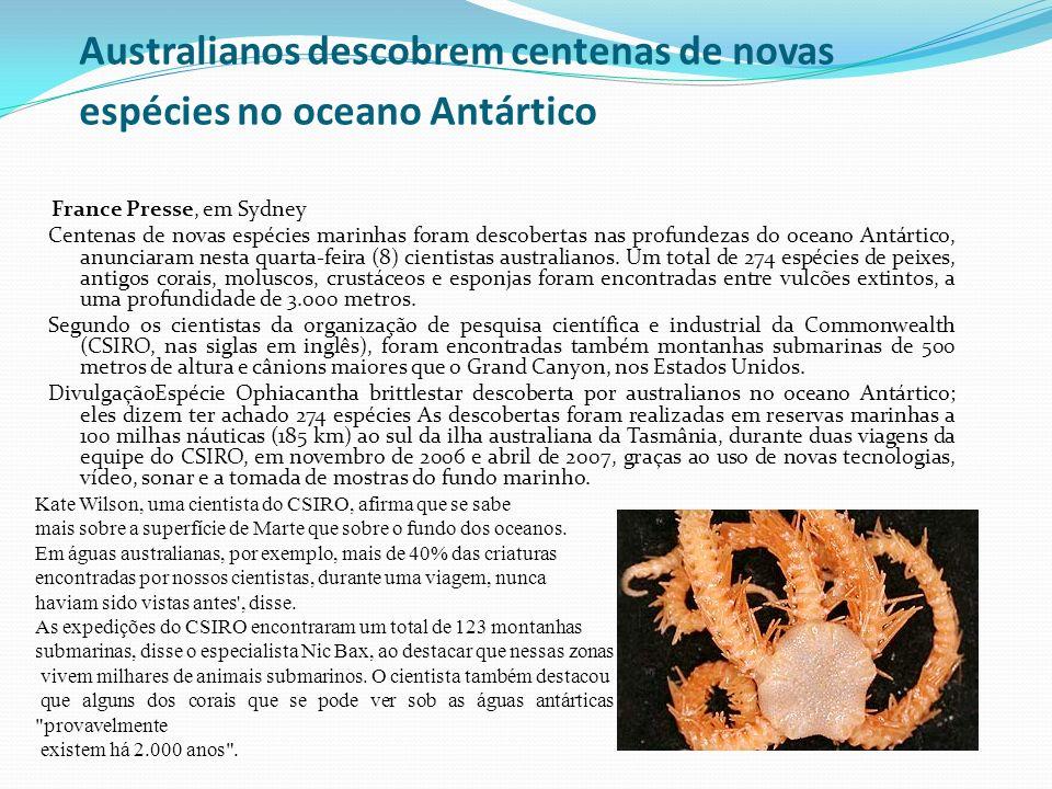 Australianos descobrem centenas de novas espécies no oceano Antártico France Presse, em Sydney Centenas de novas espécies marinhas foram descobertas n