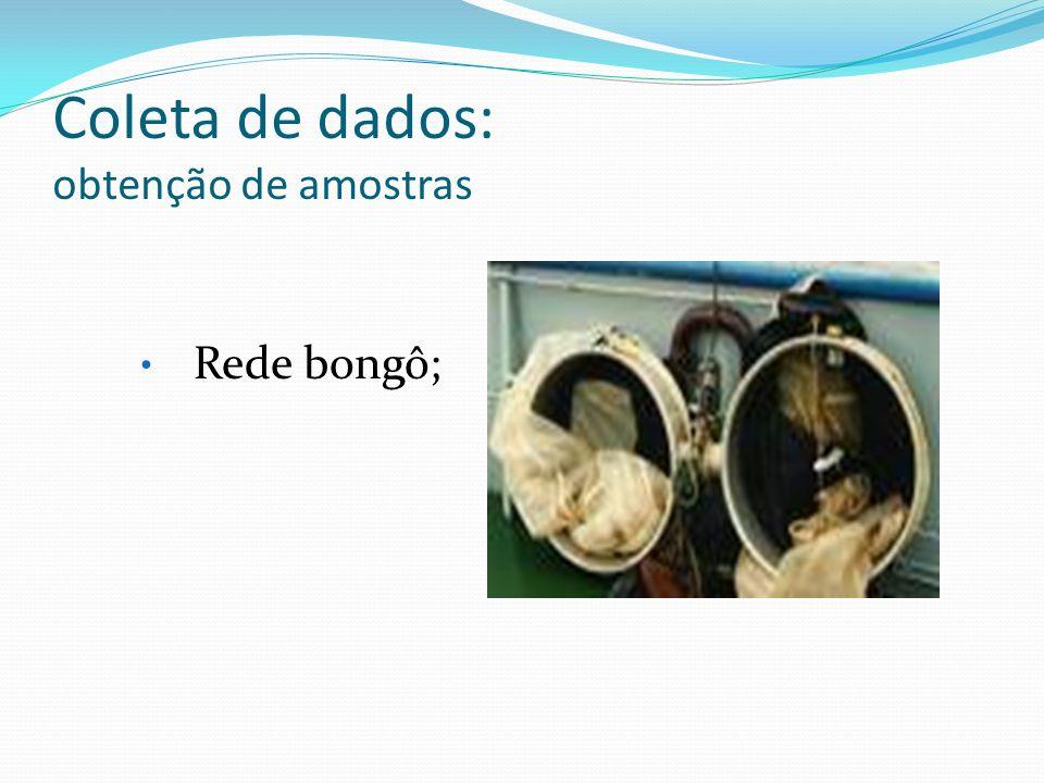 Coleta de dados: obtenção de amostras Rede bongô;