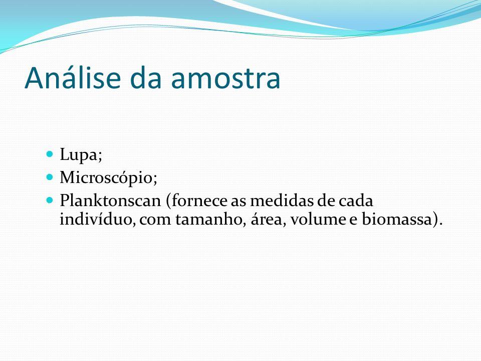 Análise da amostra Lupa; Microscópio; Planktonscan (fornece as medidas de cada indivíduo, com tamanho, área, volume e biomassa).