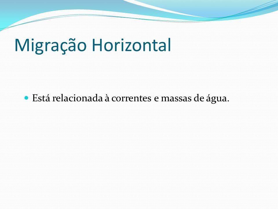 Migração Horizontal Está relacionada à correntes e massas de água.
