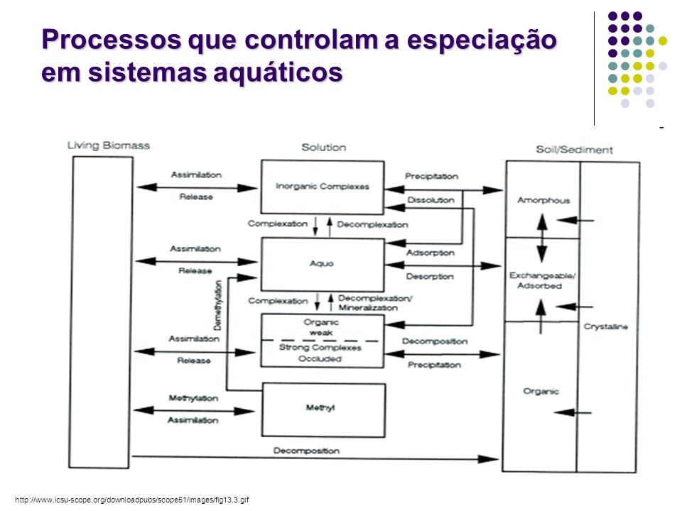 50 Processos que controlam a especiação em sistemas aquáticos http://www.icsu-scope.org/downloadpubs/scope51/images/fig13.3.gif