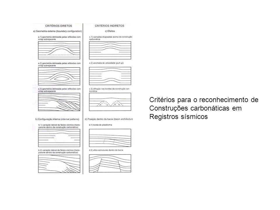 Critérios para o reconhecimento de Construções carbonáticas em Registros sísmicos