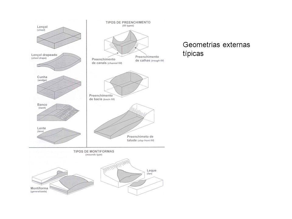 Geometria externa e padrões Internos de montiformas