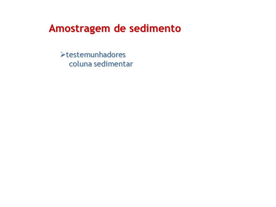 testemunhadores testemunhadores coluna sedimentar coluna sedimentar Amostragem de sedimento