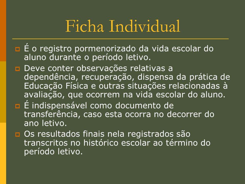 Ficha Individual É o registro pormenorizado da vida escolar do aluno durante o período letivo. Deve conter observações relativas a dependência, recupe