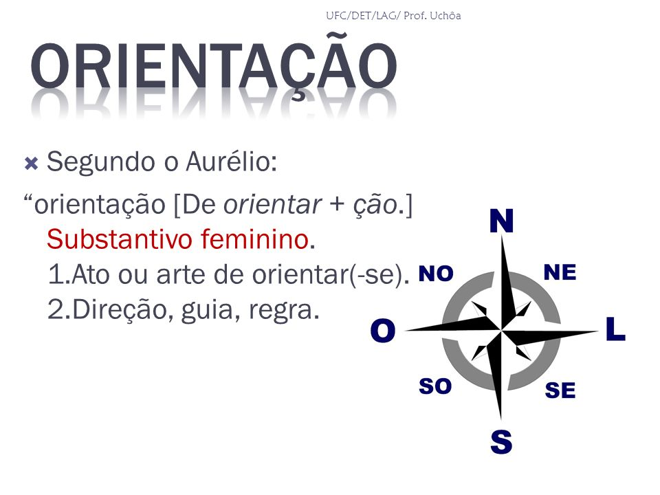 Segundo o Aurélio: orientação [De orientar + ção.] Substantivo feminino. 1.Ato ou arte de orientar(-se). 2.Direção, guia, regra. UFC/DET/LAG/ Prof. Uc