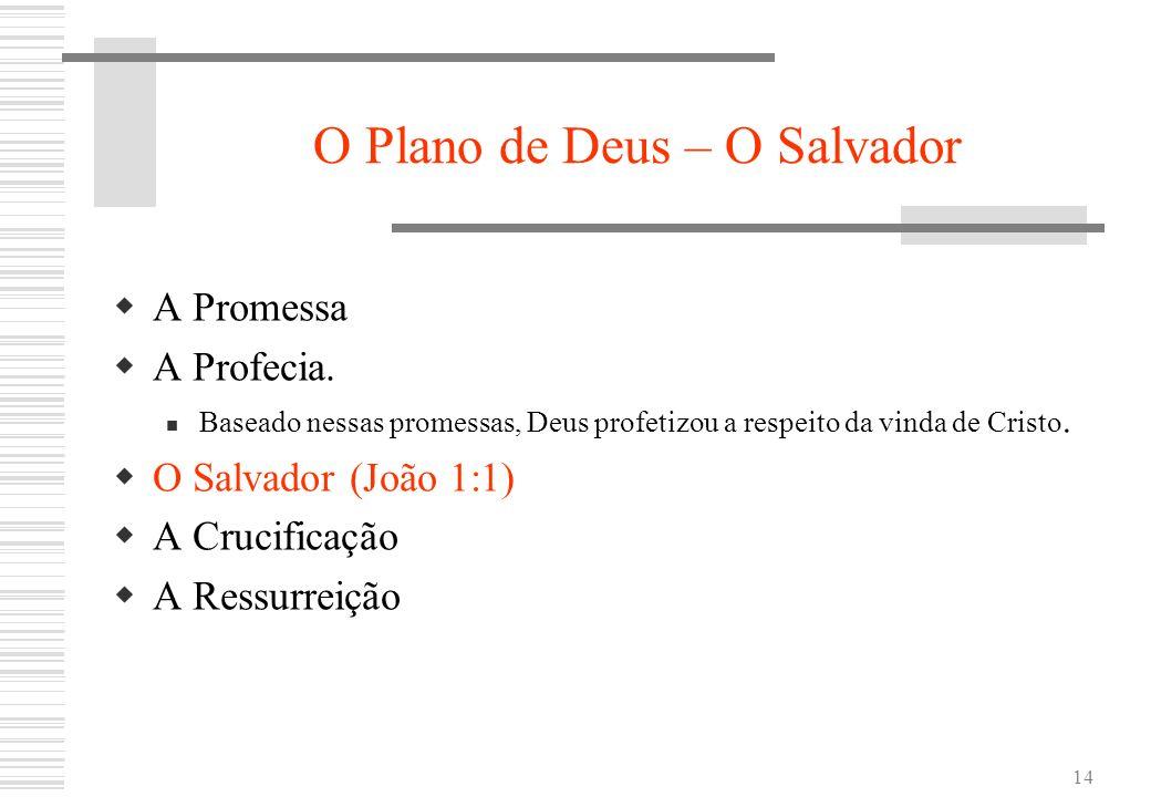 14 O Plano de Deus – O Salvador A Promessa A Profecia. Baseado nessas promessas, Deus profetizou a respeito da vinda de Cristo. O Salvador (João 1:1)