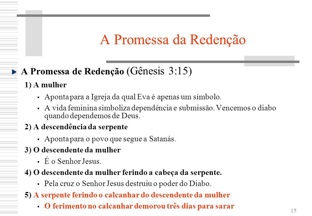 15 A Promessa da Redenção A Promessa de Redenção (Gênesis 3:15) 1) A mulher Aponta para a Igreja da qual Eva é apenas um símbolo. A vida feminina simb