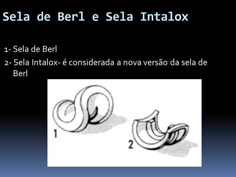 Sela de Berl e Sela Intalox 1- Sela de Berl 2- Sela Intalox- é considerada a nova versão da sela de Berl