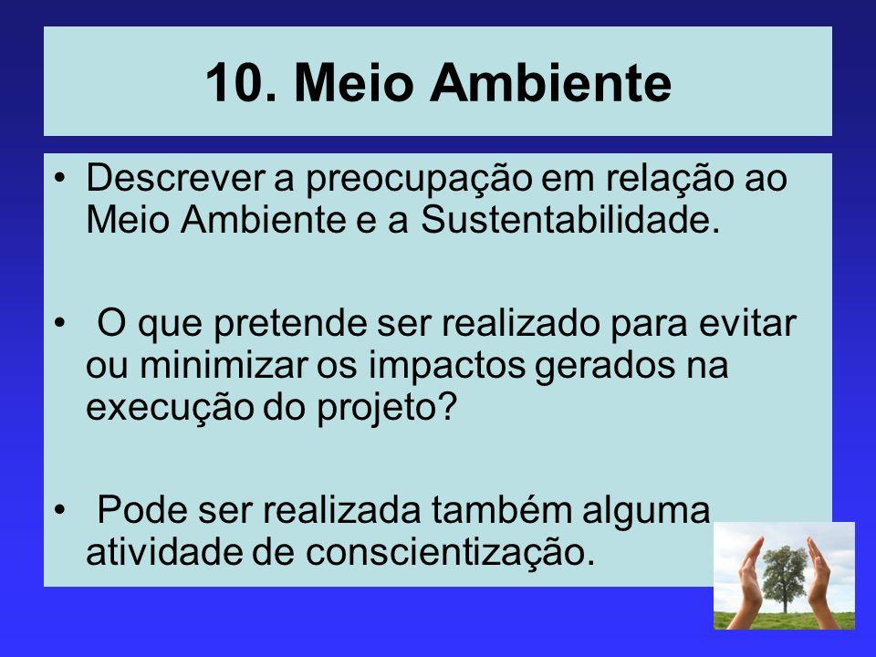 10. Meio Ambiente Descrever a preocupação em relação ao Meio Ambiente e a Sustentabilidade. O que pretende ser realizado para evitar ou minimizar os i