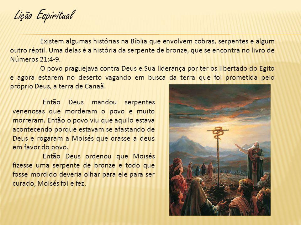 Lição Espiritual Existem algumas histórias na Bíblia que envolvem cobras, serpentes e algum outro réptil. Uma delas é a história da serpente de bronze