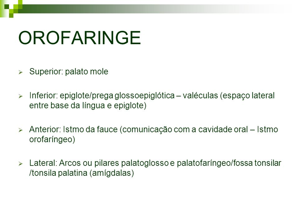 OROFARINGE Superior: palato mole Inferior: epiglote/prega glossoepiglótica – valéculas (espaço lateral entre base da língua e epiglote) Anterior: Istm