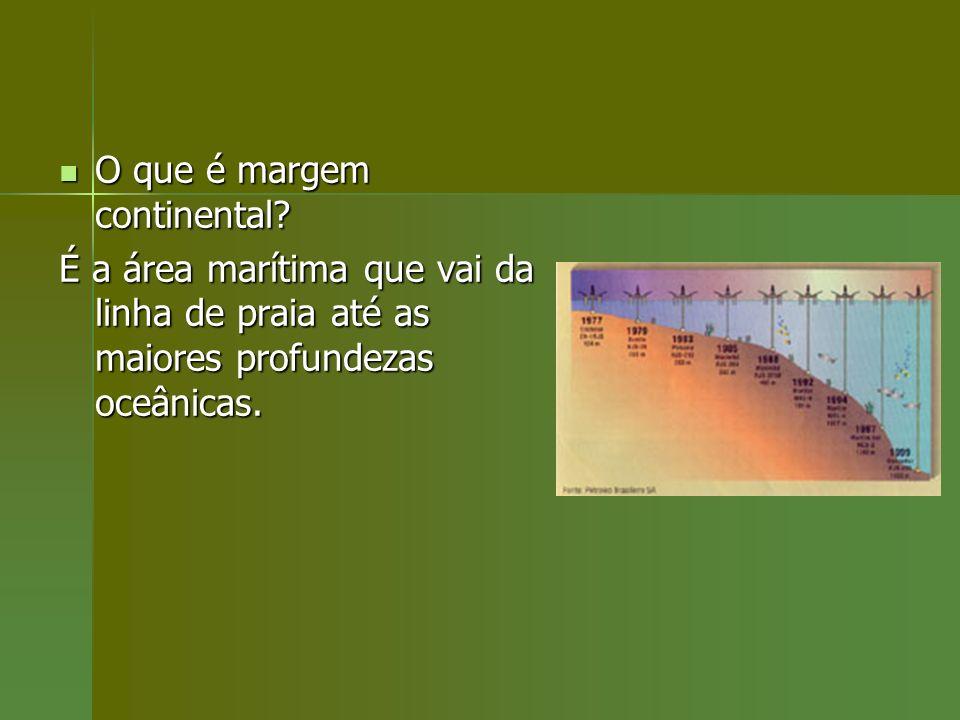 O que é margem continental? O que é margem continental? É a área marítima que vai da linha de praia até as maiores profundezas oceânicas.