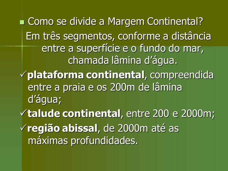 Como se divide a Margem Continental? Como se divide a Margem Continental? Em três segmentos, conforme a distância entre a superfície e o fundo do mar,