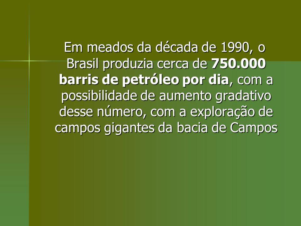 Em meados da década de 1990, o Brasil produzia cerca de 750.000 barris de petróleo por dia, com a possibilidade de aumento gradativo desse número, com