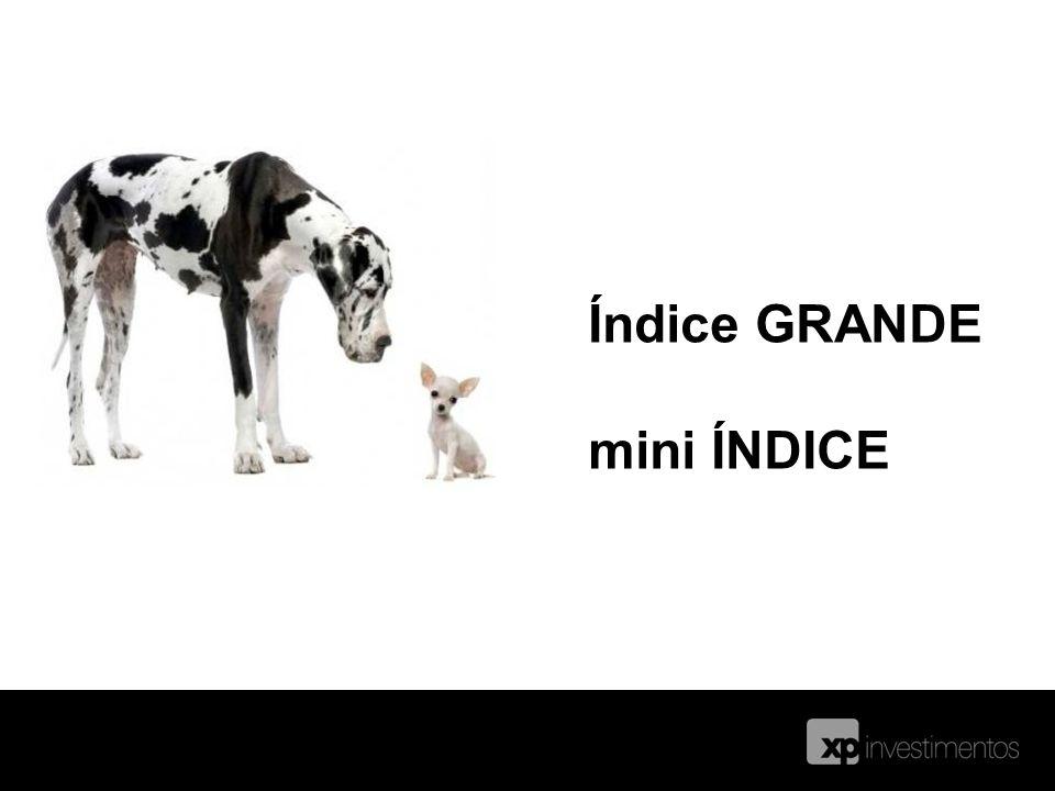 Índice GRANDE mini ÍNDICE