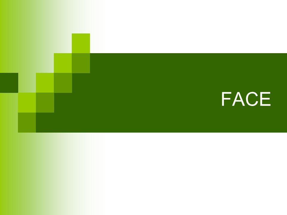 FACE – INERVAÇÃO SENSORIAL Nervo principal Trigêmeo (V Par). Sensitivo