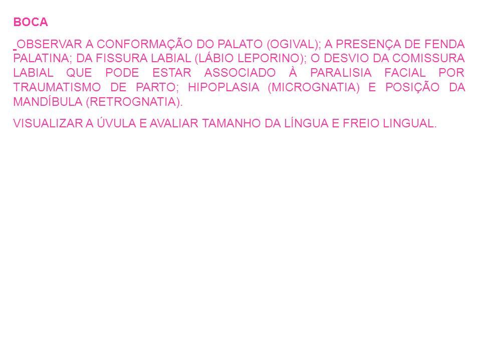 BOCA OBSERVAR A CONFORMAÇÃO DO PALATO (OGIVAL); A PRESENÇA DE FENDA PALATINA; DA FISSURA LABIAL (LÁBIO LEPORINO); O DESVIO DA COMISSURA LABIAL QUE POD