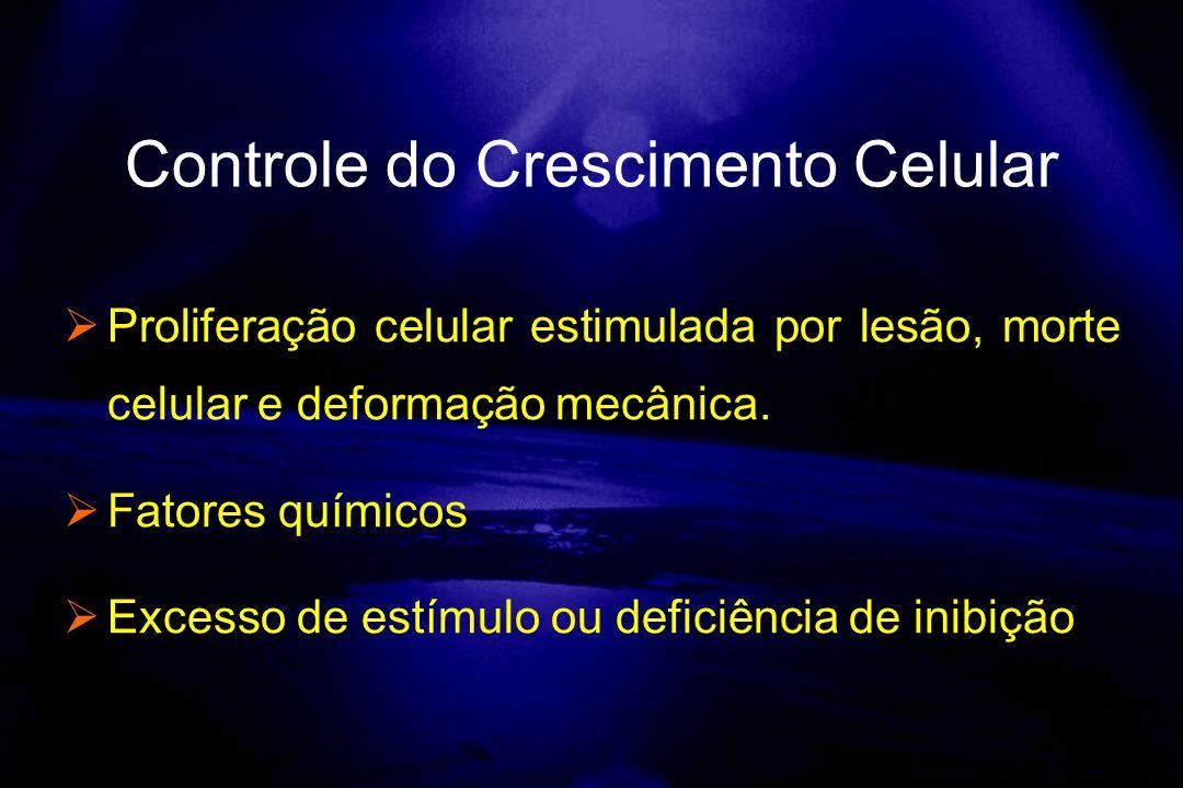 Proliferação celular estimulada por lesão, morte celular e deformação mecânica. Fatores químicos Excesso de estímulo ou deficiência de inibição Contro