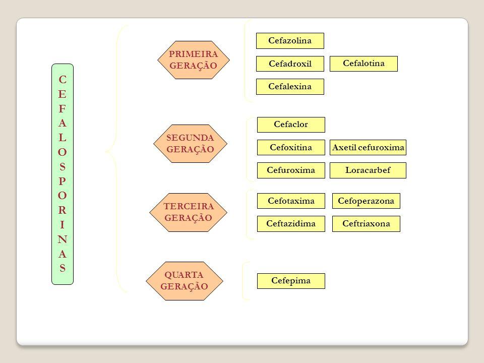 CEFALOSPORINASCEFALOSPORINAS Cefepima Ceftazidima Cefaclor Cefoxitina Cefuroxima Cefazolina Cefotaxima PRIMEIRA GERAÇÃO SEGUNDA GERAÇÃO TERCEIRA GERAÇ