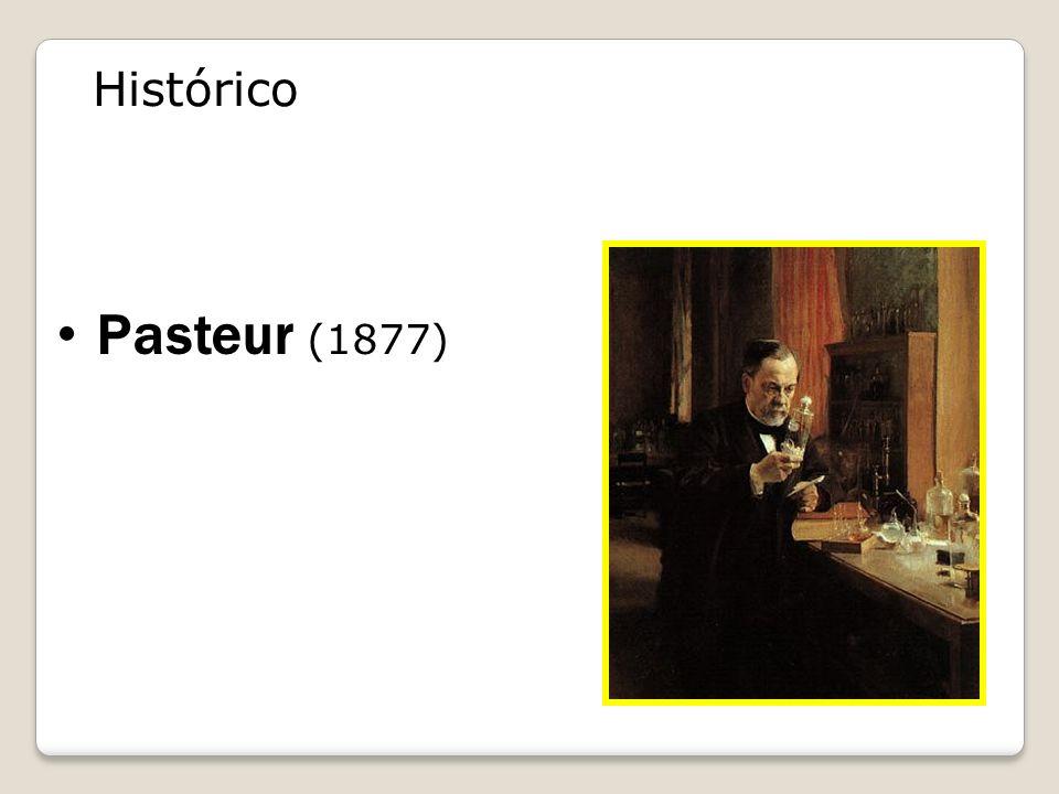 Pasteur (1877) bactéria x bactéria Histórico
