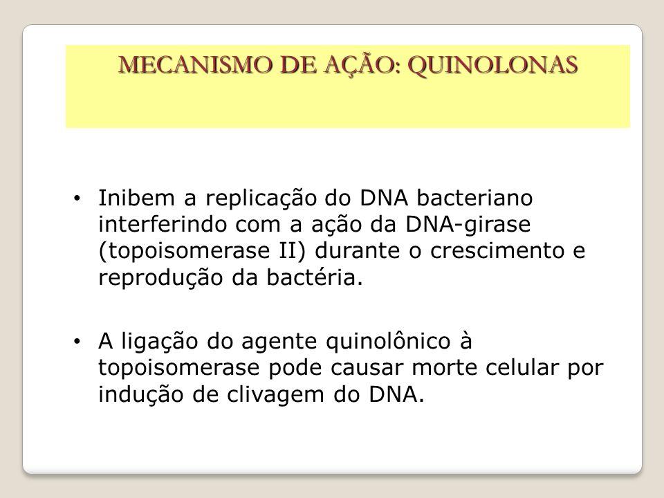 MECANISMO DE AÇÃO: QUINOLONAS Inibem a replicação do DNA bacteriano interferindo com a ação da DNA-girase (topoisomerase II) durante o crescimento e r